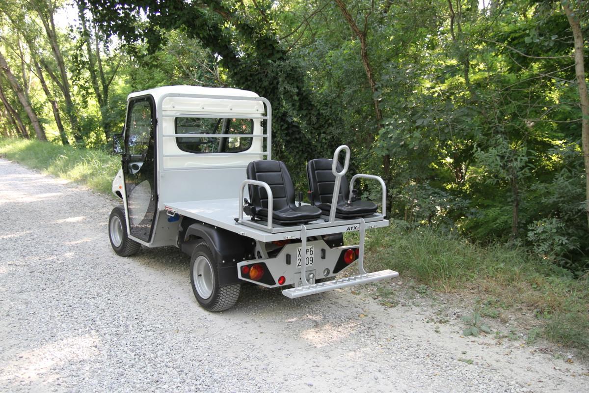 2 4 6 sitzer elektrofahrzeuge. Black Bedroom Furniture Sets. Home Design Ideas