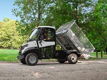 Small electric utility vehicles