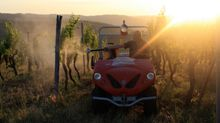 Vineyard tractor for eco-sustainable farm