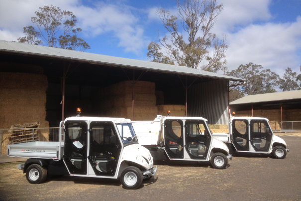 electric utility vehicles for zoos
